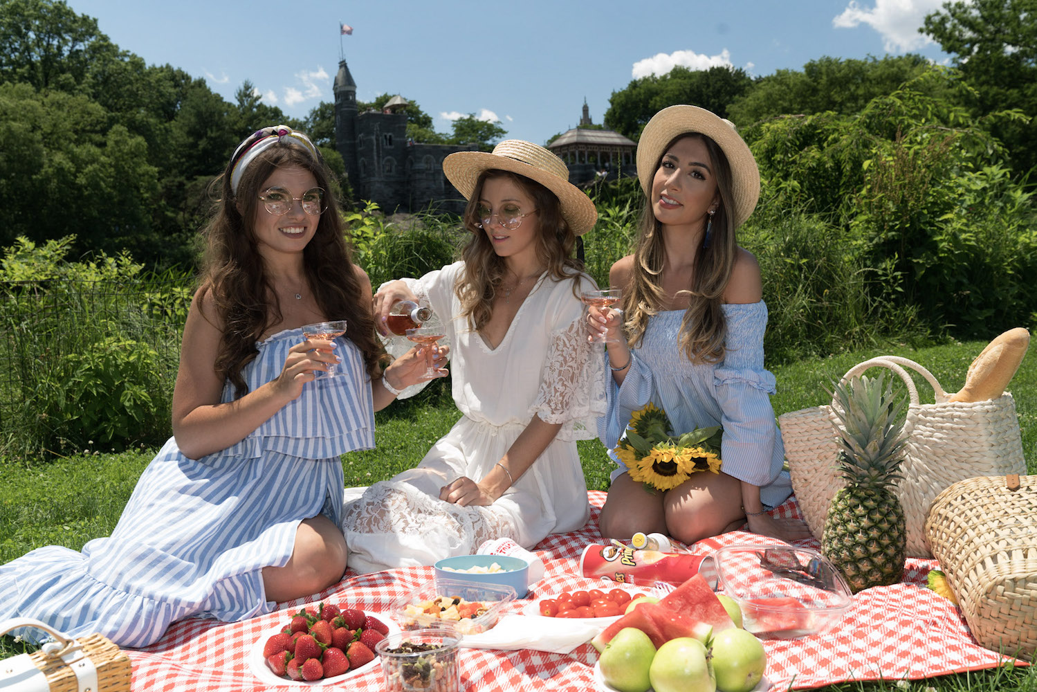 allbuenothings-shein-collaboration-sheinside-picnic-central-park