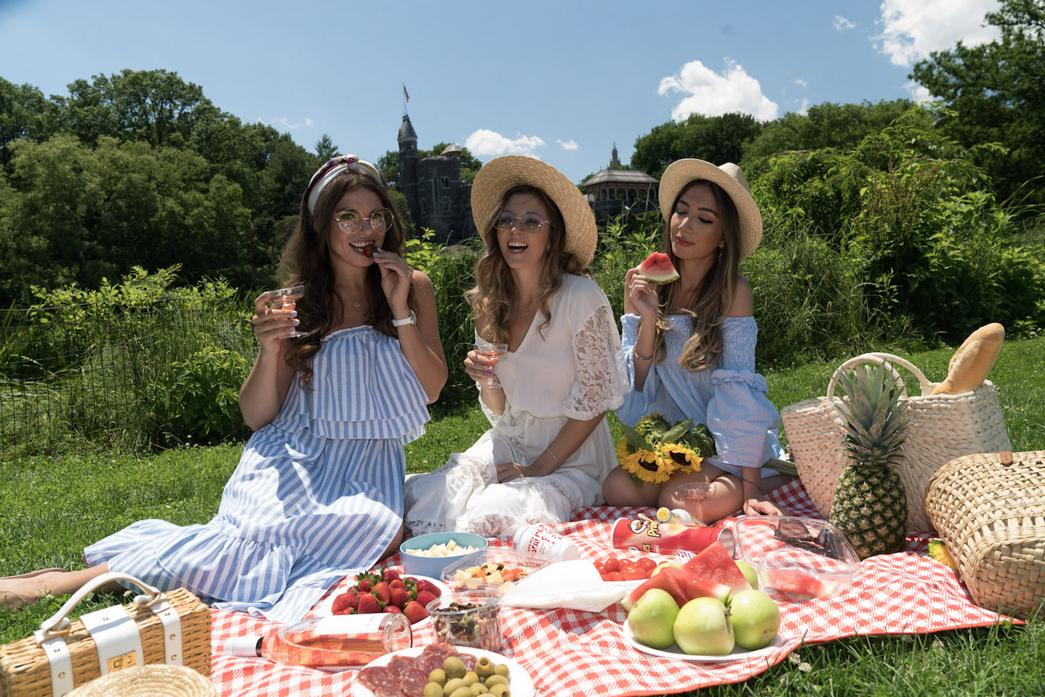 collaboration-sheinside-picnic-central-park.-allbuenothings-shein