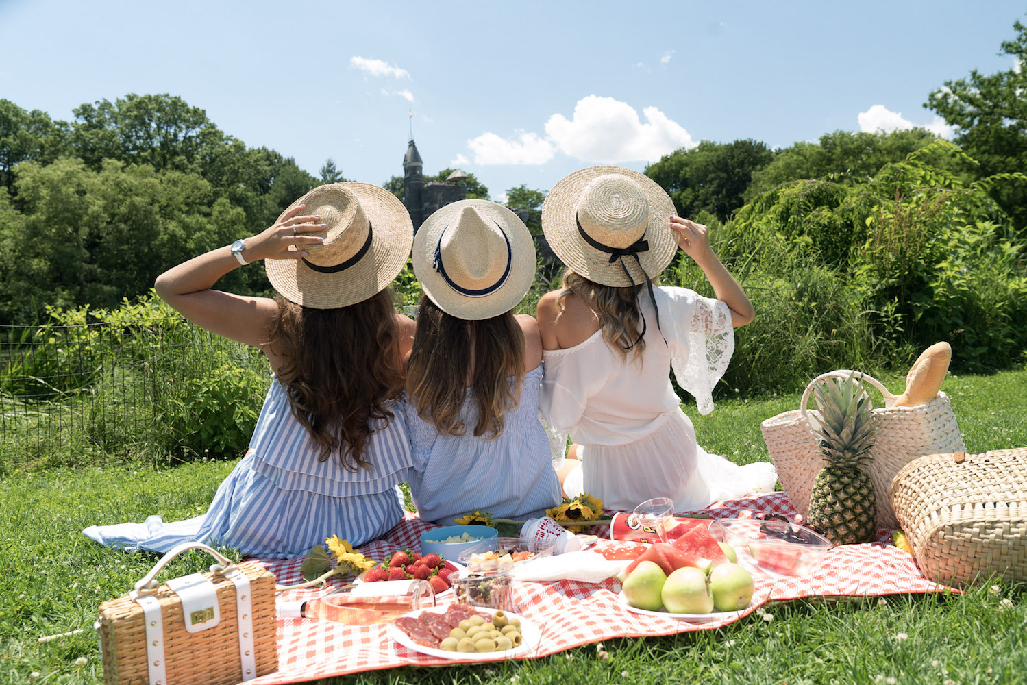collaboration-sheinside-picnic-central-park.-fashion-blog-shein-allbuenothings